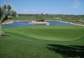 DiatoPOR - used for golf greens - Consagros AG - Steffisburg